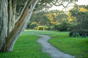 Centennialpark341574_1280